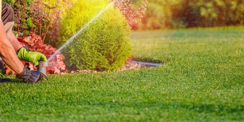 Sonoma Valley Gardening